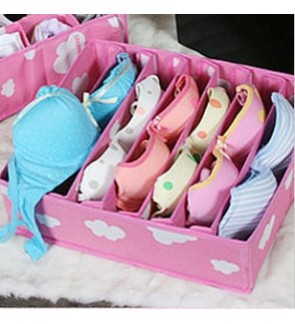 Bra Storage Case
